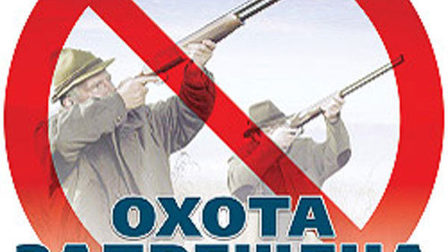 Ohota_thumb_main